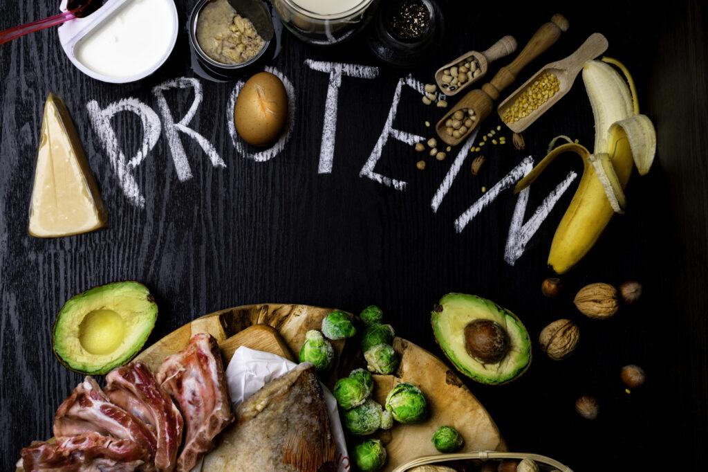 Best Foods High in Protein